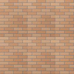 Gạch ốp tường Inax 355/VIZ-10N